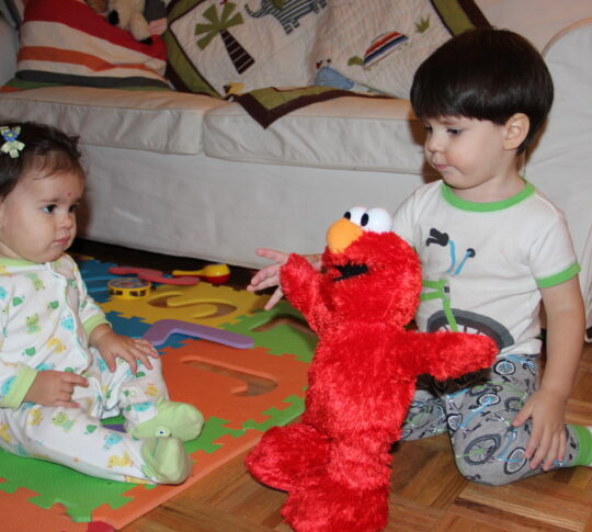 Hockey Pockey Elmo