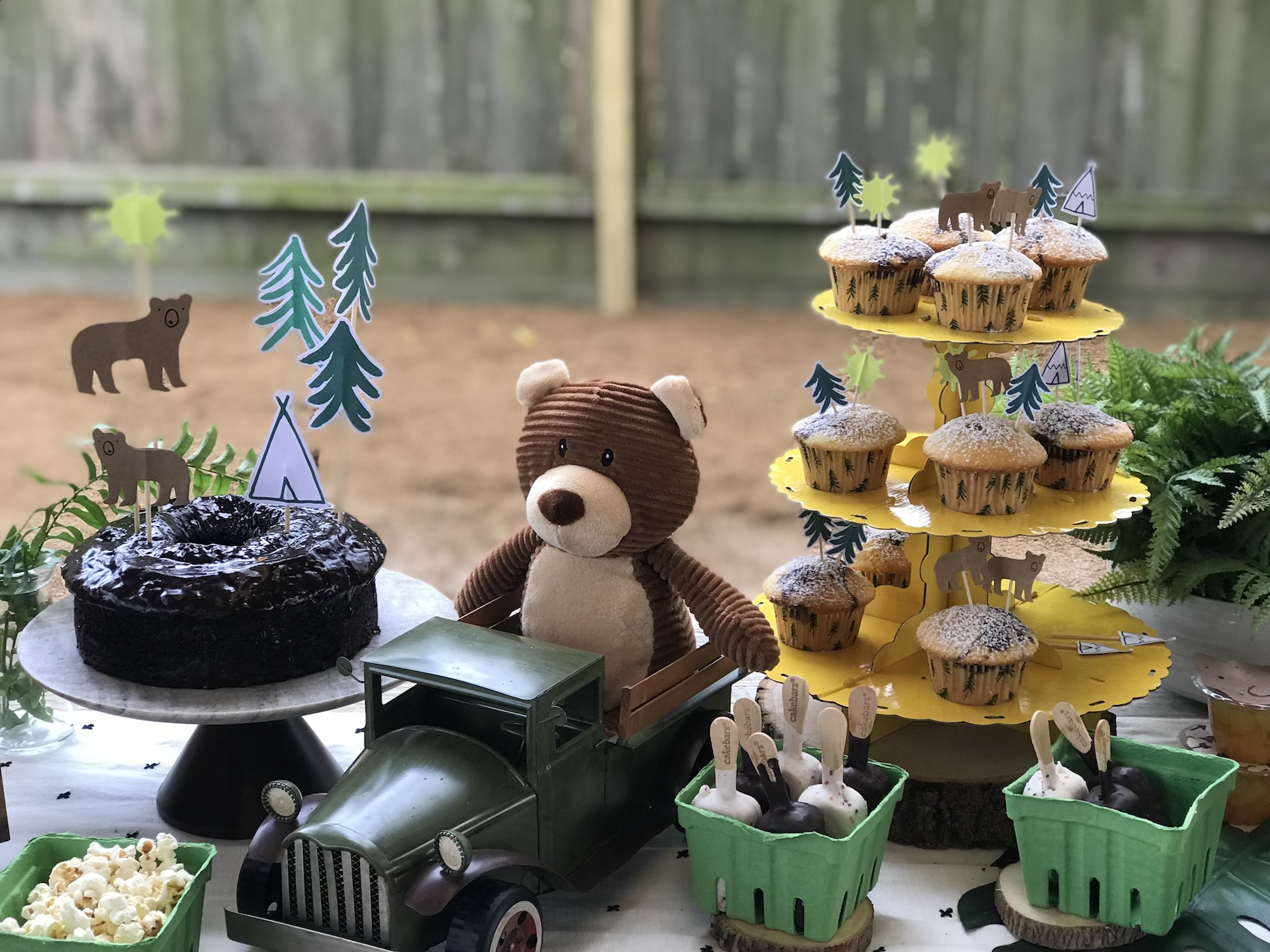 Lets Explore Birthday Party | criandoando.com